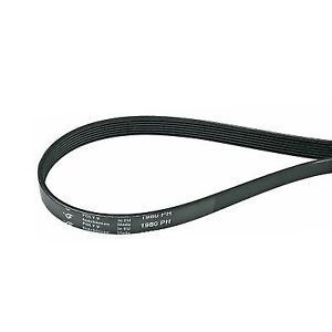 Tumble Dryer Belt Whirlpool / Indesit - 481281728435